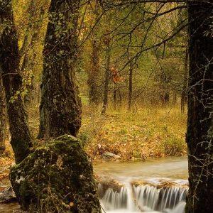 Nacimiento del rio Guadalquivir en sierra de cazorla