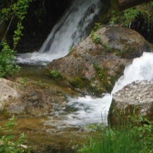rio cerezuelo, entorno natural de cazorla